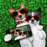 10 Funny Instagram Accounts You Need to Follow